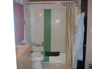 bathroom remodeling contractors cary